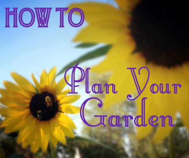 how to plan your garden