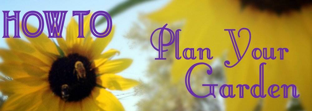 How to Plan a Garden