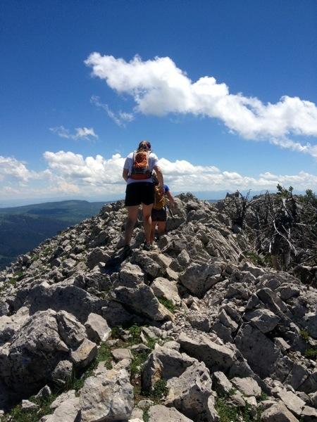 bridger ridge run