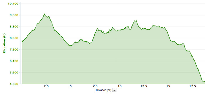 Bridger Ridge Run Elevation Profile