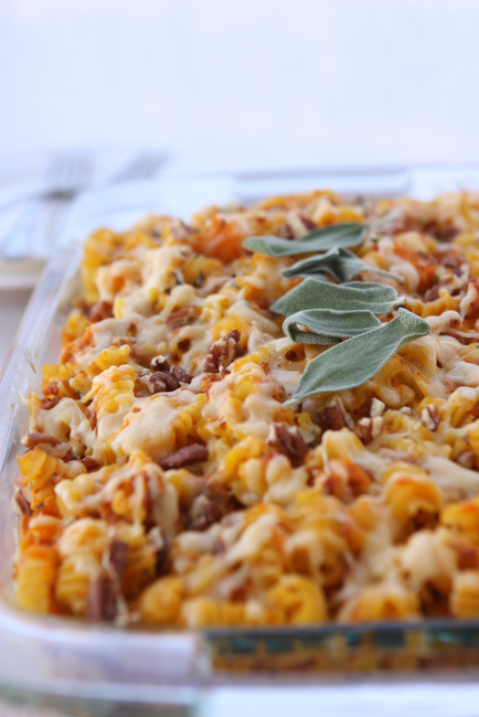Butternut Squash, Chorizo, and Pecan Baked Pasta | thekitchenpaper.com